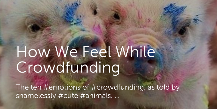 "Two cute piglets covered in paint with headline ""How We Feel While Crowdfunding: the ten emotions of crowdfunding, as told by shamelessly cute animals"""
