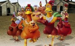 Animated chickens, running